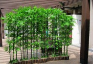 yapay_bambular